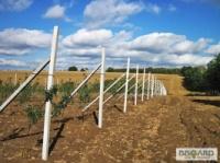 Виноградные столбики армированные новые|escape:'html'