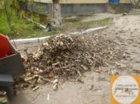 Аренда дробилки веток, измельчителя древесины