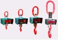 Весы электронные крановые ВЕК 10 д. Купите сейчас
