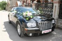 Наклейки на номерной знак свадебной машины|escape:'html'