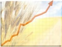 ИН-АГРО: Управленческий учет на сельскохозяйственном предприятии. Технико-экономическое планирование в растениеводстве|escape:'html'
