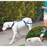Поводок для собак «The Instant Trainer Leash» Код:28314292|escape:'html'