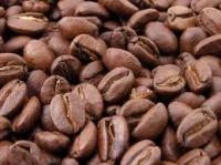 Кофе Робуста и Арабика