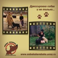 Продажа дрессированных собак|escape:'html'