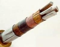 Кабель АСБл, ААБл и ААШв 6 и 10 Кв силовой алюминиевый!|escape:'html'
