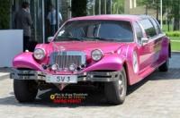 Аренда Ретро лимузина розового цвета Excalibur Phantom. (Ескалибур)|escape:'html'