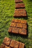 плитка для ландшафт RUTA JARDINE (рута жардин) 50грн/шт|escape:'html'
