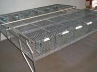Клітка відгодівельна для кролів escape:'html'