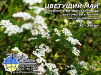 Июль! Июль! Июль! Экскурсия в Ботанический Сад|escape:'html'