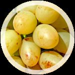 Столовый виноград «Аркадия»|escape:'html'