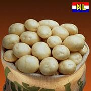 Картопля Орла escape:'html'