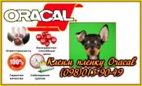 Поклейка рекламной пленки оракал (Oracal) окна, витрины, авто (цена) escape:'html'