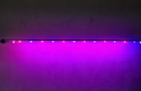 Фитоактивный светодиодный светильник Flora-60 escape:'html'