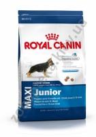 Royal Canin Maxi Junior - корм Роял Канин для щенков крупных собак в возрасте от 5 до 15 месяцев, 1 кг|escape:'html'