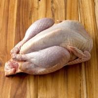 Тушки BIO перепелиные, фазана и курицы свежие.