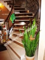 Лестницы в Житомире escape:'html'