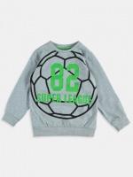 16-135 LCW 5-6 лет (рост 110-116) Детская кофта на мальчика / свитшот реглан пуловер толстовка