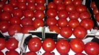 Продам помидоры|escape:'html'