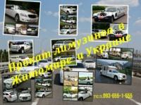 Аренда лимузинов в Житомире - 093-655-1-655|escape:'html'