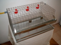Клетка для кур|escape:'html'