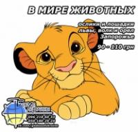 В мире животных! МиниЗоопарк «Симба»|escape:'html'