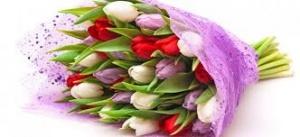 Доставка цветов и подарков в Шостка
