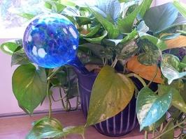 Шар для полива растений Aqua Globe, Аква Глоб