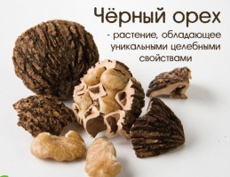 Черный орех настойка 250 мл