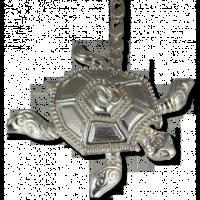 Ионизатор для воды серебряный «Черепашка»