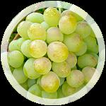 Технический виноград «Белый»
