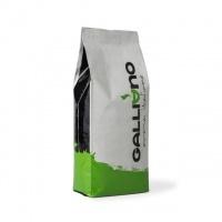 Кофе в зерне Green Cup 1 кг