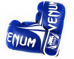 Перчатки боксерские кожаные VENUM Challendger BO-5245-BL