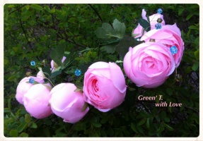 Віночок «Весна - це така пора року, коли дуже добре починати щось нове.»