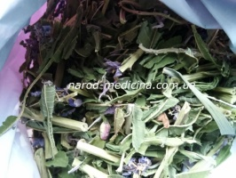 Иван-чай листовой успокаивающий