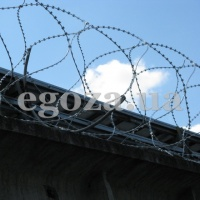 ЗКР-С Концертина 450/5