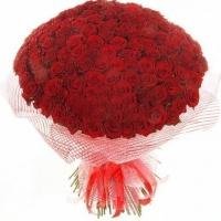 Букет 201 троянда (70 см)