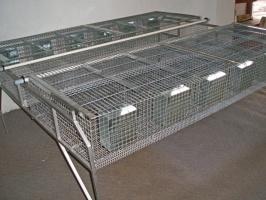 Клітка відгодівельна для кролів