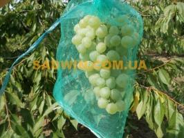Сетка для винограда