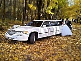 Автомобили и лимузины прокат на свадьбу девичники и мальчишники вечеринки выпускные вечера встреча из роддома