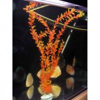 Искусственное пластиковое растение 60 см