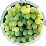 Столовый виноград «Загадка»