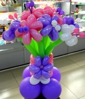 Разноцветные ромашки №28