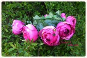 Віночок «Весна - справжнє диво.» Дженні Даунхем.