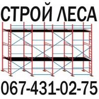 АРЕНДА ЛЕСОВ 067-431-02-75
