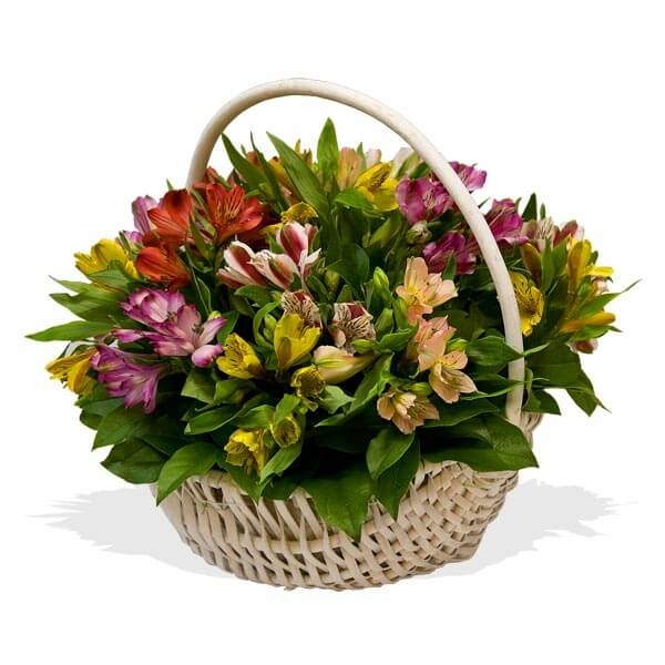 Доставка цветов херсонская область, цветы