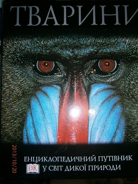 Тварини. Енциклопедичний путівник у світ дикої природи