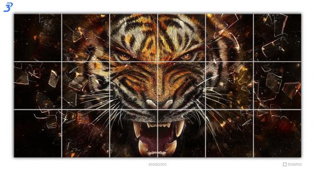 Сет «Тигр»