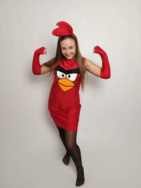 Аниматор Энгри Бердс (Angry Birds)