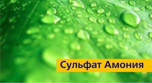 Сульфата аммония.: продажа, цена в Киеве, Магазин Дача сад ...