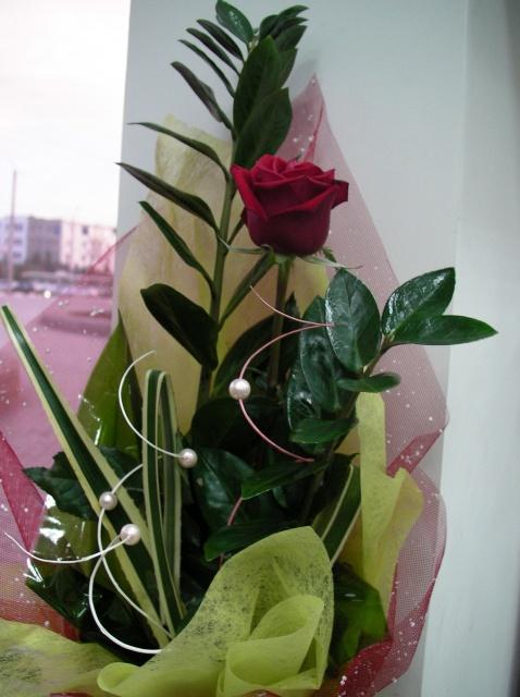 букет из одной красной розы